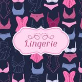 Fashion lingerie background design with female Royalty Free Stock Images