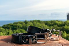 Fashion luxury snakeskin leather belts outdoors. Python belts on a tropical background. Indonesia, Bali stock photos