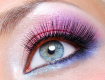 Fashion makeup of a female eye Royalty Free Stock Photography
