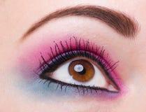 Fashion makeup of a female eye Royalty Free Stock Photos