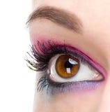 Fashion makeup of a female eye Stock Photos