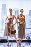 Fashion Mannequin Royalty Free Stock Photos