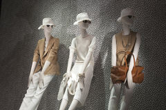 Fashion mannequin showcase display shopping retail. Fashion luxury showcase display shopping retail stock photography