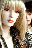 Fashion Mannequins Stock Images