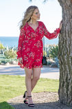 Fashion Model. A beautiful classy lady in a red dress at the park standing by a tree stock photography