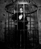 Fashion model in fantasy dress. Posing in steel cage stock image