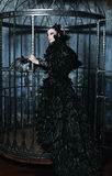 Fashion model in fantasy dress. Posing in steel cage stock photo