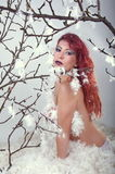 Fashion model in feathers Stock Image