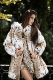 Fashion model in fur coat Stock Photos