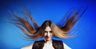 Fashion model with hair blowing in the wind. Blue background royalty free stock photography