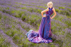 Fashion model in lavender fields Royalty Free Stock Photos