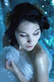 Fashion model portrait of winter woman with Christmas shine make Stock Images