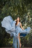 Woman in blue dress in fairy forest. stock images