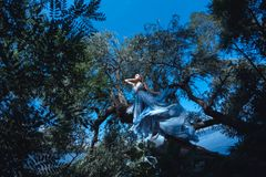 Beautiful woman in blue dress in fairy forest. royalty free stock photos