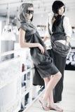 fashion models Στοκ Φωτογραφίες