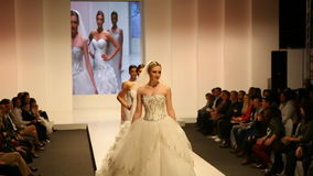 Fashion models in wedding dresses stock video footage
