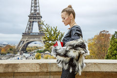 Fashion-monger with Christmas tree in front of Eiffel tower Stock Photo