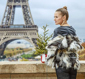 Fashion-monger with Christmas tree looking into distance, Paris Stock Photos