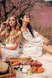 Beautiful girls in elegant dresses having romantic picnic among flowering peach trees in garden. Fashion outdoor photo of beautiful girls in elegant dresses royalty free stock photos