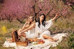 Beautiful girls in elegant dresses having romantic picnic among flowering peach trees in garden royalty free stock images