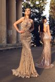 Beautiful young women with dark hair in luxurious evening dresses. Fashion outdoor photo of two beautiful girls with dark hair in luxurious evening dresses royalty free stock photos