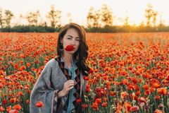 Pretty woman with red poppy in flower meadow. Fashion outdoor portrait of pretty brunette young woman holding red poppy near her face in flower meadow at sunset royalty free stock images