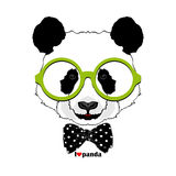 Fashion panda in glasses Stock Photography
