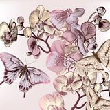 Fashion pattern with butterflies and orchids Stock Images