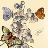 Fashion pattern with butterflies and orchids Stock Photo