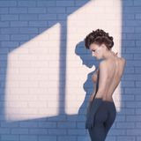 Nude elegant woman near the brick wall Stock Images