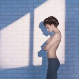 Nude elegant woman near the brick wall Stock Photography