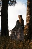 Fashion photo of young beautiful woman posing in forest near big tree Stock Photos