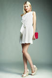 Fashion photo of young magnificent woman. Girl with handbag Royalty Free Stock Image