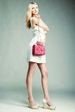 Fashion photo of young magnificent woman. Girl with handbag Stock Image