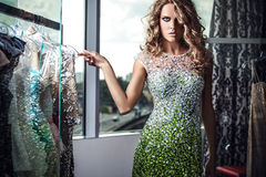 Fashion photo of young magnificent woman in luxury dress. Stock Image