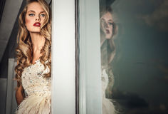 Fashion photo of young magnificent woman in luxury dress. Royalty Free Stock Image