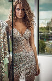 Fashion photo of young magnificent woman in luxury dress. Stock Photo