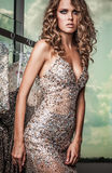 Fashion photo of young magnificent woman in luxury dress. Stock Images
