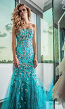 Fashion photo of young magnificent woman in luxury dress. Stock Photography