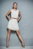 Fashion photo of young woman. Girl posing. Studio photo Stock Image