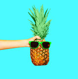 Fashion pineapple with sunglasses on blue background stock photos