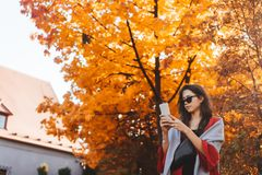 Fashion portrait of beautiful woman in autumn park. Fashion portrait of beautiful woman in stylish clothes in aun park stock photos