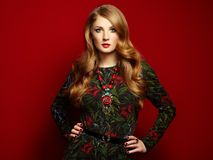 Fashion portrait of elegant woman with magnificent hair Stock Images