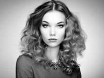 Fashion portrait of elegant woman with magnificent hair Stock Photos