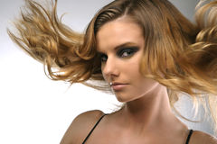 Fashion portrait of a girl. With hair lightly fluttering in the wind Royalty Free Stock Photography