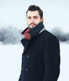 Fashion portrait handsome bearded man in winter royalty free stock image