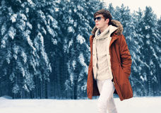 Fashion portrait handsome elegant man wearing jacket and knitted sweater walking in winter forest over snowy trees background Stock Images