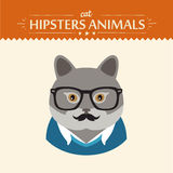 Fashion Portrait of Hipster Cat with glasses and Stock Images