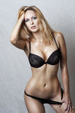 Fashion portrait of sexy underwear model Royalty Free Stock Images