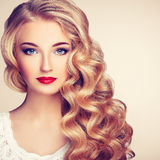 Fashion portrait of young beautiful woman with elegant hairstyle Stock Image